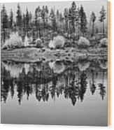 Autumn Reflection Black And White Wood Print