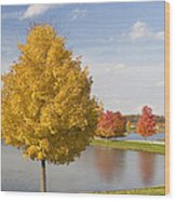 Autumn Day By The Lake Wood Print