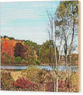 Autmn Pond Closer Look Wood Print