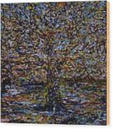Autum In Central Park Wood Print