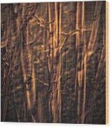 Autummn's Promise 13 Wood Print