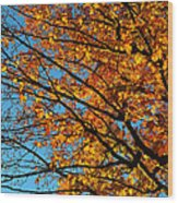 Autumn 2013 Wood Print