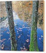Autumn - 7 Wood Print by Okan YILMAZ