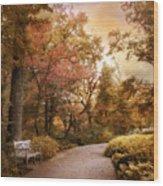 Autumn Aesthetic Wood Print