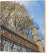 Autumn Air-kiss Wood Print