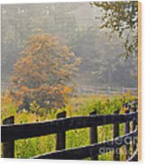 Autumn Along The Fence Wood Print