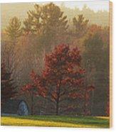 Autumn Ambers And Umbers Wood Print