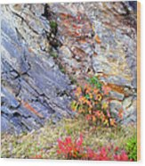 Autumn And Rocks Vertical Wood Print