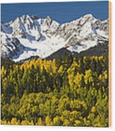 Autumn And Snow Covered Peaks North Wood Print
