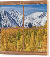 Autumn Aspen Tree Forest Barn Wood Picture Window Frame View Wood Print by James BO  Insogna