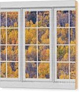 Autumn Aspen Trees White Picture Window View Wood Print