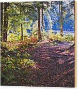Autumn At Cary Lake Wood Print