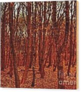 Autumn At Formby Woods  Wood Print