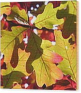 Autumn At Its Best Wood Print