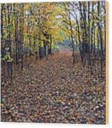 Autumn At Mono Cliffs Wood Print