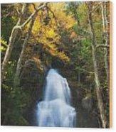 Autumn At Moss Glenn Falls Wood Print