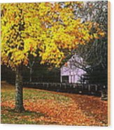Autumn At Old Mill Wood Print
