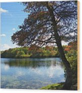 Autumn At Slough Pond Wood Print
