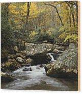 Autumn At Stony Creek Wood Print