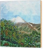 Autumn At The Foot Of Mount Elbrus Wood Print
