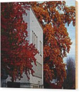 Autumn At The Grants Pass Courthouse Wood Print