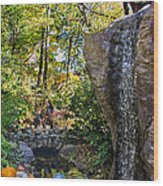 Autumn At The Waterfall Wood Print