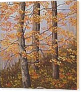 Autumn At Tishomingo State Park Wood Print