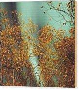 Autumn Aurora Wood Print