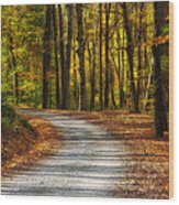 Autumn Beauty Wood Print
