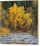 Autumn Beauty In Boise County Wood Print