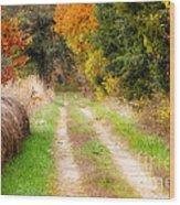 Autumn Beauty On Rural Dirt Road Wood Print