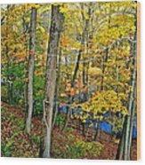 Autumn Below Wood Print