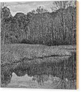 Autumn Black And White Wood Print