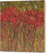 Autumn Blaze Wood Print