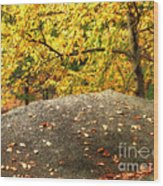 Autumn Boulder And Leaves Wood Print