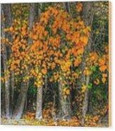 Autumn Breakout No.2 Wood Print