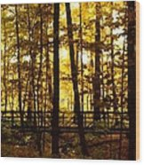 Autumn Bridge I Wood Print