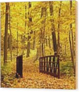 Autumn Bridge II Wood Print