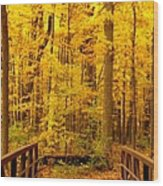Autumn Bridge V Wood Print