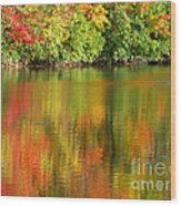 Autumn Brilliance Wood Print
