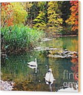 Autumn By The Swan Lake Wood Print
