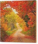 Autumn Cameo Road Wood Print by Terri Gostola