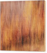 Autumn Canvas Wood Print