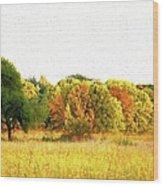 Autumn Canvas Wood Print