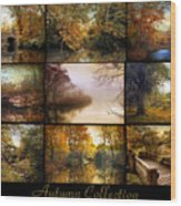 Autumn Collage Wood Print