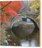 Autumn Color And Old Stone Arched Wood Print