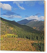 Autumn Color In Colorado Rockies Wood Print