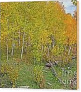 Autumn Color Wood Print by Baywest Imaging