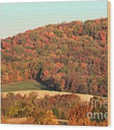 Autumn Color On Rolling Hills Wood Print