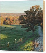 Autumn Color On Rolling Hills And Farmland Wood Print